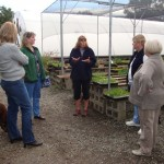 Rosemary Loveall, proprietor of Morning Sun Herb Farm, explains to the ladies about growing and propagating of herbs.